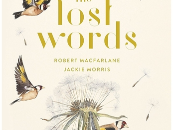 Lost for words book review
