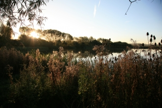 Carr Vale Nature Reserve, Guy Badham