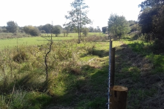 Erewash Meadows new fencing