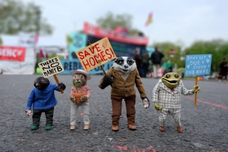 Protesting Wind in the Willows