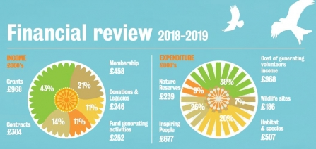 Financial review 2018-2019