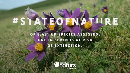 State of nature infographic