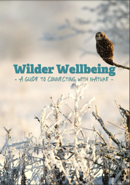 Wild Wellbeing activity pack front cover